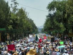 """""""Movimiento por la Paz con Justicia y Dignidad"""""""