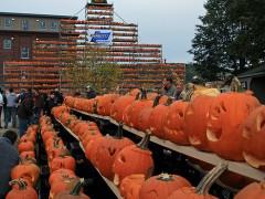Pumpkin Festival by David Smith CCBy
