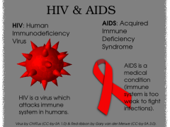 HIV & AIDS. Image by the author (CC-by-SA 3.0)