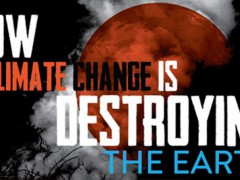 Climate Change is destroying the earth