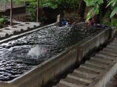 Una pila comunal en El Salvador, un país donde el derecho al acceso al agua ha generado una polémica materializada en la discusión por un anteproyecto de ley. Fotografía: Lorena Saavedra