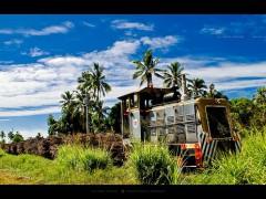Cane Train, Fiji.