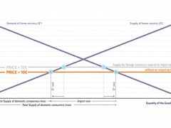 Infographics: Market equilibrium in case of abolishing the import tariff